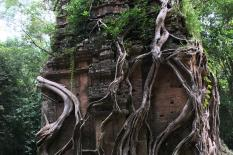Private two days from Phnom Penh to Siem Reap Road Tours - sambor-prek-kuk-group.JPG