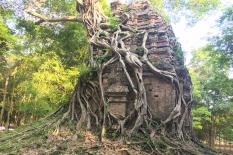 Private day tour from Siem Reap to Phnom Penh - sambor-prekuk-temple.jpg